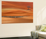 Spanish Curves Spain Wall Mural by Philippe Manguin