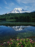 Reflection of Snowcovered Mount Rainier on Reflection Lake Photographic Print by James Randklev