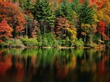 Reflections on Lake Conasauga Photographic Print by James Randklev