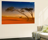Maria Island Dream Wall Mural by Margaret Morgan