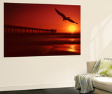 Red Flight Wall Mural by Philippe Sainte-Laudy