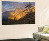 Yosemite II Wall Mural by Art Wolfe