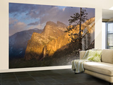 Yosemite II Wall Mural – Large by Art Wolfe
