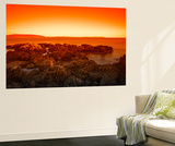 Red Ochre Beach Wall Mural by Margaret Morgan