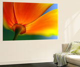 Summer Wall Mural by Ursula Abresch