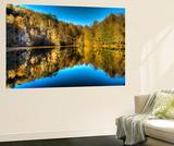 Reflection of Autumn Wall Mural by Nejdet Duzen
