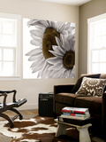 White Softness Wall Mural by Philippe Sainte-Laudy