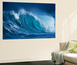 Hang Ten Wall Mural by Art Wolfe