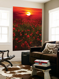 Warm Sunset Wall Mural by Marco Carmassi