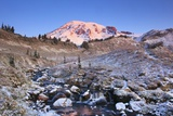 Sunrise over Mt. Rainier with Snow on Fall Colors, Washington State Photographic Print by Craig Tuttle