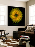Sunflower Wall Mural by Magda Indigo