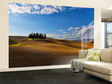 Tuscan Cypresses Wall Mural – Large by Marco Carmassi