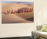 Desert Walk Wandgemälde von Art Wolfe