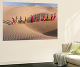 Desert Walk Wall Mural by Art Wolfe