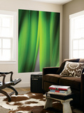 Green Leaf Curtains Wall Mural by Philippe Sainte-Laudy