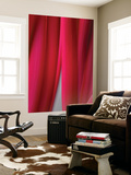 Red Leaf Curtains Wall Mural by Philippe Sainte-Laudy