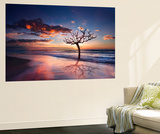 Tree in the Sea Wall Mural by Marco Carmassi