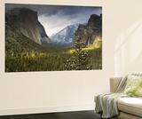 Yosemite Wandgemälde von Art Wolfe