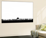 Hedgerow! Wall Mural by Adrian Campfield