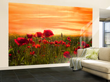 Red Wall Mural – Large by Marco Carmassi