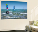 Wind Surfing Wall Mural by Adrian Campfield