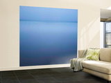 Appassionato Wall Mural – Large by Doug Chinnery