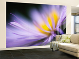 Purple Wall Mural – Large by Ursula Abresch