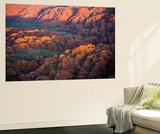Sunrise in Australia Wall Mural by Art Wolfe
