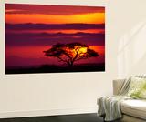 Sunscape II Veggmaleri av Art Wolfe
