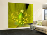 Poppy Yellow Wall Mural – Large by Magda Indigo