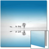 Blue Season Prints by Philippe Sainte-Laudy