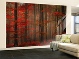 Enchanting Red Wall Mural – Large by Philippe Sainte-Laudy