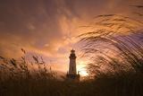 Yaquina Head Lighthouse at Sunset Papier Photo par Craig Tuttle