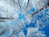 Gefrorener Himmel Kunst auf Metall von Philippe Sainte-Laudy