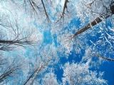 Frusen himmel Konst på metall av Philippe Sainte-Laudy