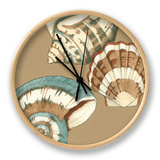 Small Shell Trio on Khaki II Clock by Megan Meagher