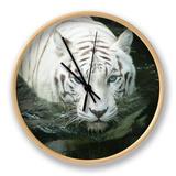Hvid tiger Ur af noelbynature