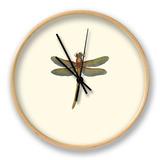 Miniature Dragonfly II Ur af Vision Studio