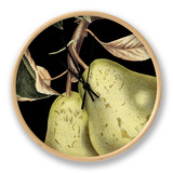 Dramatic Pear Ur af Vision Studio
