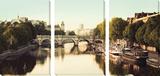 Río Sena Arte por Irene Suchocki