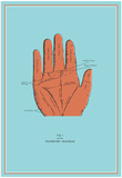 Palmistry Chart Posters