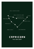 Astrology Chart Capricorn Poster