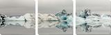 Eisberg Kunstdrucke von Irene Suchocki