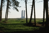 Grove of Trees at Vimy Memorial Photographic Print by Michael St. Maur Sheil