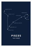 Astrology Chart Pieces Print