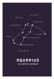 Astrology Chart Aquarius Poster