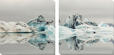 Iceberg Prints by Irene Suchocki