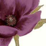 Grandiflora Blush I Giclee Print by Linda Wood