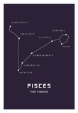 Astrology Chart Pieces Posters