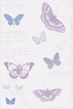 Butterfly Sketchbook Poster by Maria Mendez